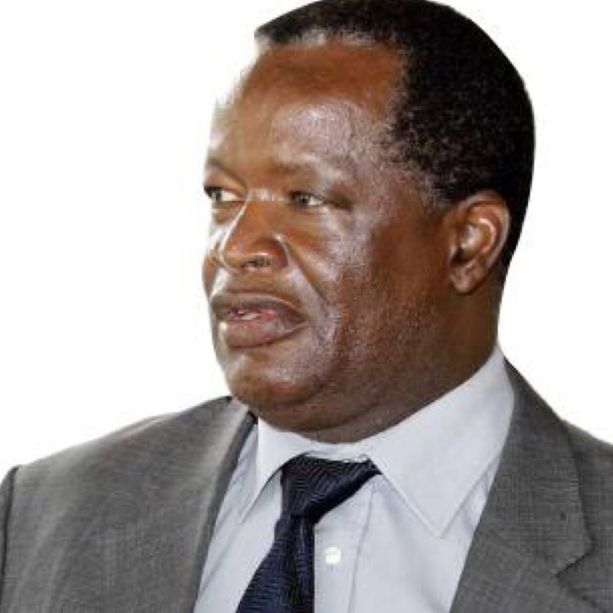 Photo of UPND 'WELCOMES' COMMISSION OF INQUIRY