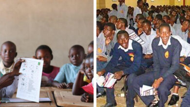 Photo of VOTE: Should Government reduce the number of subjects each pupil takes at primary and secondary school level?